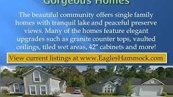 Eagles Hammock Community in Jacksonville Florida