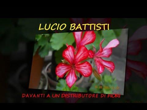 Foto sui fiori e canzoni sui fiori youtube for Fiori stilizzati immagini