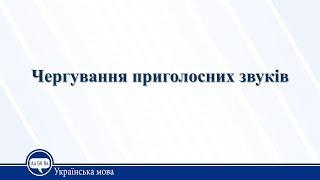Урок 25. Українська мова 10 клас