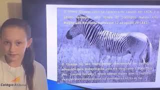102   Animais Extintos