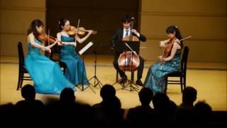 ヴァイオリンのソムリエ 弦楽器サラサーテ 横浜市青葉区青葉台2-3-3 プ...