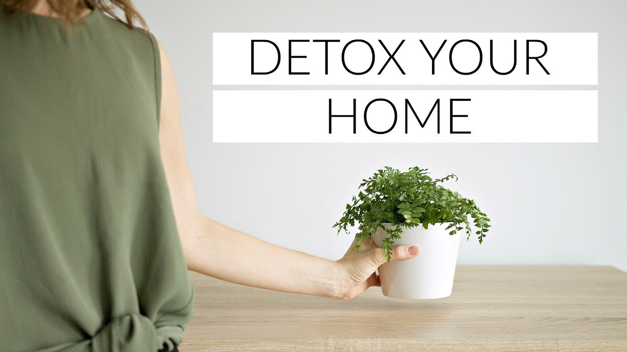 DETOX YOUR HOME | 6 tips for a clean, healthy home