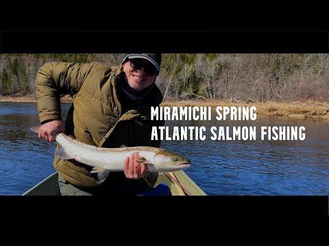 "Miramichi River -  ""Mullalley"" Spring Atlantic salmon 2021"