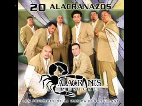 Un Idiota - Alacranes Musical