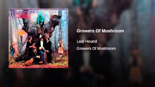Growers Of Mushroom