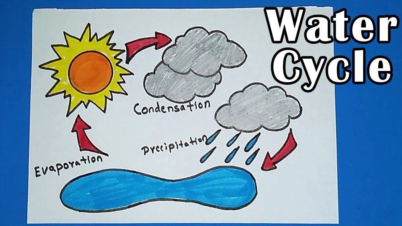 How To Draw Water Cycle Of A School Project Youtube