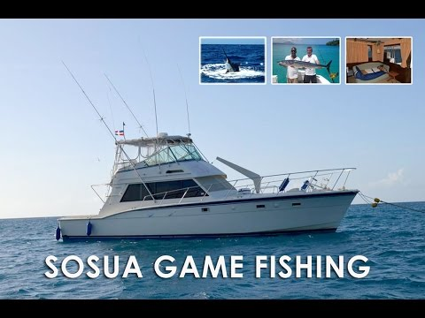 Sosua Game Fishing - Charter Fishing Tours Dominican Republic