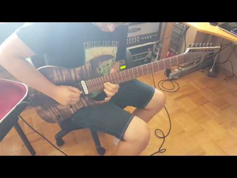 Bowes Guitars - Mike's SFLx7 - Too Many Notes Demo