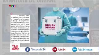 Người châu Âu cần nội tạng, người châu Phi có nội tạng và muốn ở châu Âu | VTV24