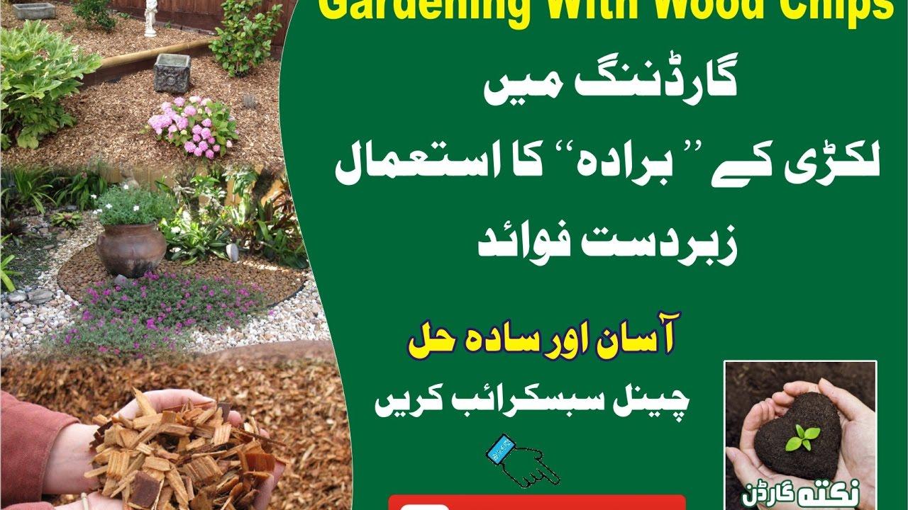 Kitchen Gardening Gardening With Wood Chips April 2017 Kitchen Gardening Urdu Hindko