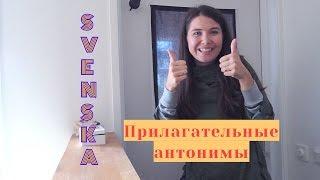 Шведский язык: Прилагательные - антонимы