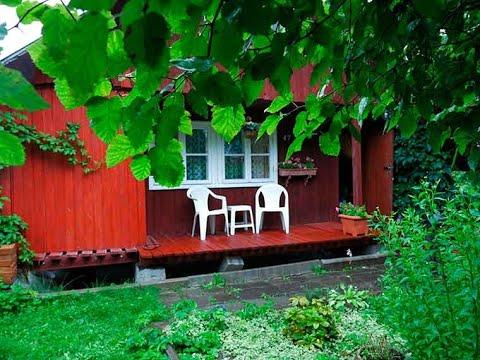 Купить дачу в Эстонии недорого