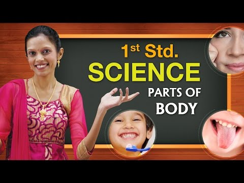 Parts of Body, How my Body Works, Sense Organs | Science Basics For Kids | Science For Class 1