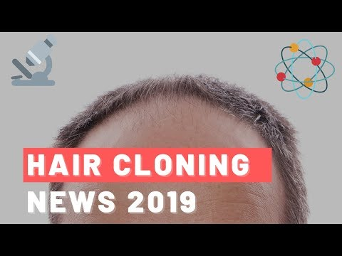 hair-cloning-news-in-2019:-the-answer-we've-all-been-looking-for?