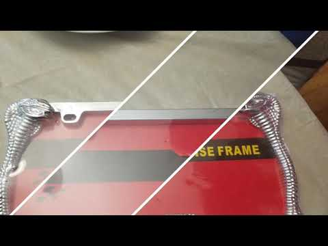 Big Ant car license plates 2 pc snake design