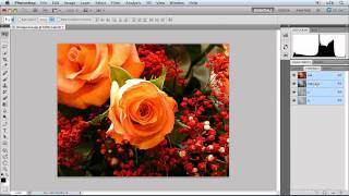 Photoshop CS5: Understanding Color Space