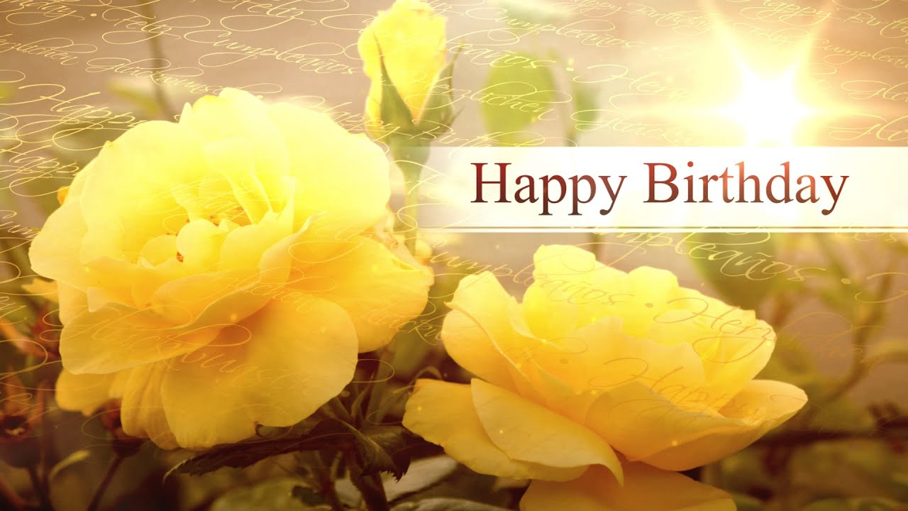 Happy Birthday Roses Bokeh Animation Motion Graphics Background