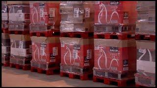 Grupo Gallo dona 150 toneladas de producto al Banco de Alimentos por el Covid-19