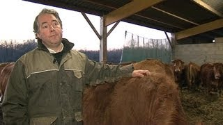 L'abattage traditionnel menacé selon des éleveurs
