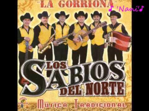 David Castañeda Los Sabios Del Norte Live