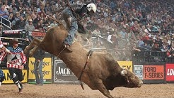 Bulls That Have WRECKED The Most Riders: Top 3 Buckoff Streaks Right Now   2019