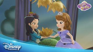 Disney Junior Bahçe Partisi - Prenses Sofia