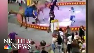7 Injured When Camel Gets Spooked At Pittsburgh Circus | NBC Nightly News