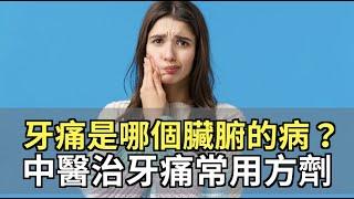 牙痛是哪個臟腑的病? 中醫治牙痛常用方劑 胡乃文 醫師 329 中醫知識CooL