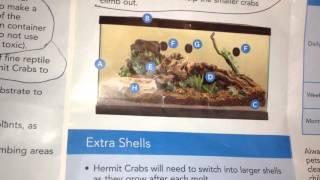 HERMIT CRAB PETSMART PAMPHLET PART 2