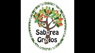 Restaurantes de Ávila-Cervecería Gredos