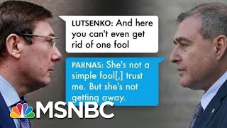 Ukraine prosecutor Offered Dirt On Biden In Exchange For Firing Of U.S. Ambassador | All In | MSNBC