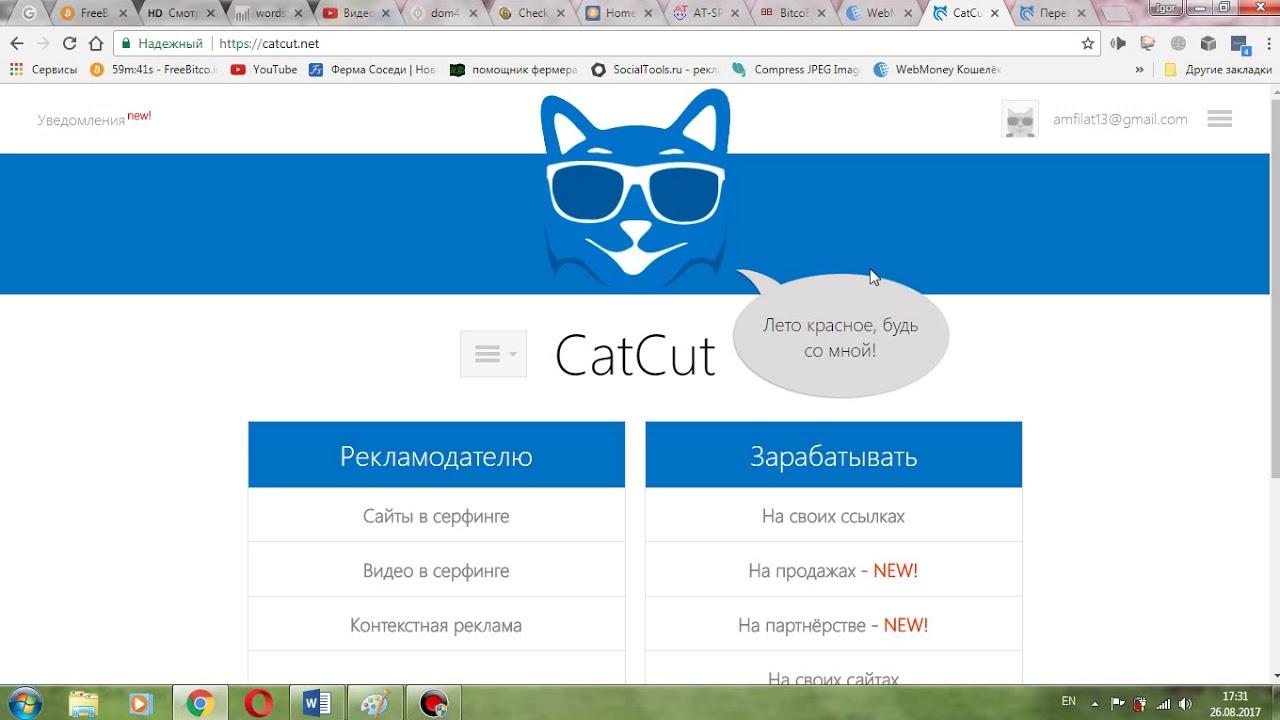 Как зарабатывать на вебмани ютуб addurl php как заработать луганск интернет магазины 6 13 3