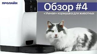 Гаджет для животных - умная кормушка для кошек и собак Smart HD Pet Feeder PF02