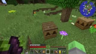 Hermit Pack - 4 - Torcherino Bees