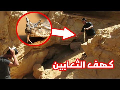 كهف الثعابين من اخطر الكهوف
