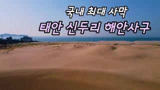 태안 신두리 해안사구 - 국내 최대 사막인 천연기념물이…