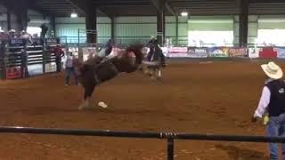 Hat Brand / GF Buckers - Chrome Cowboy