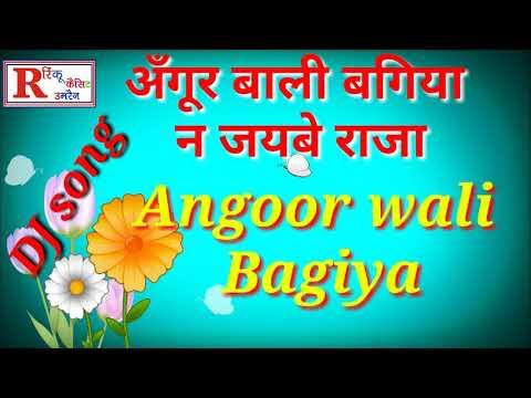 Angoor wali Bagiya na jaibe Raja DJ remix song