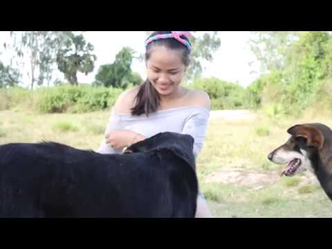 Horse Teaches Little Girl A Big Lesson from YouTube · Duration:  13 seconds