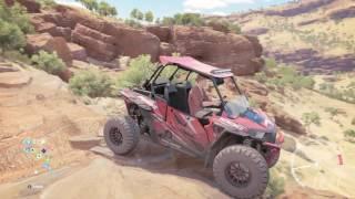 Forza Horizon 3 Polaris RZR Build