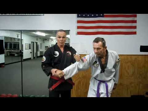 Practical Hapkido can it work?
