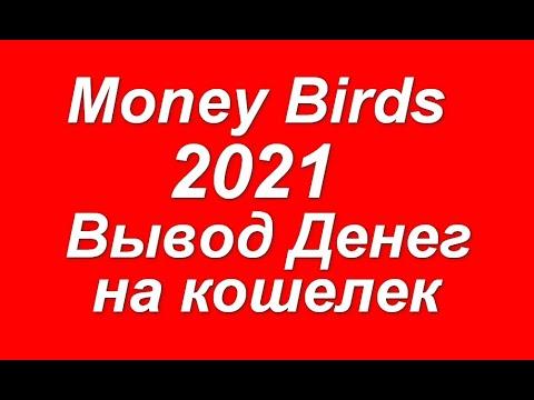 Как заработать в Money Birds 2020