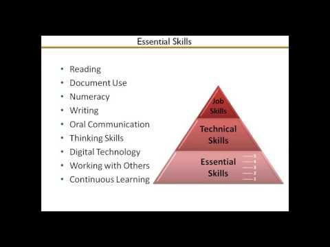 Webinar: Essential Skills for Job Seekers