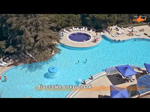 евпатория санатории лечение псориаза / Крым