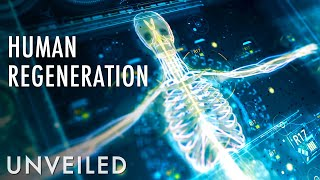 Download What If Humans Regenerated? | Unveiled