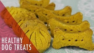 Homemade Dog Treats: Healthy Pumpkin Recipe