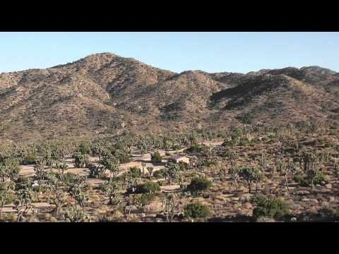 Yucca Valley CA