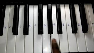 Zaalima Raees | Piano Tutorial | How To Play Piano