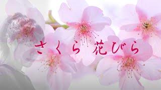 自宅録音の未発売デモです。2014/3/29 www.kiyosuweb.com Copyright (C)...
