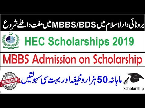 MBBS/BDS Admission on Scholarships 2019 /Monthly 51000 Rupees in Baronei Darussalam